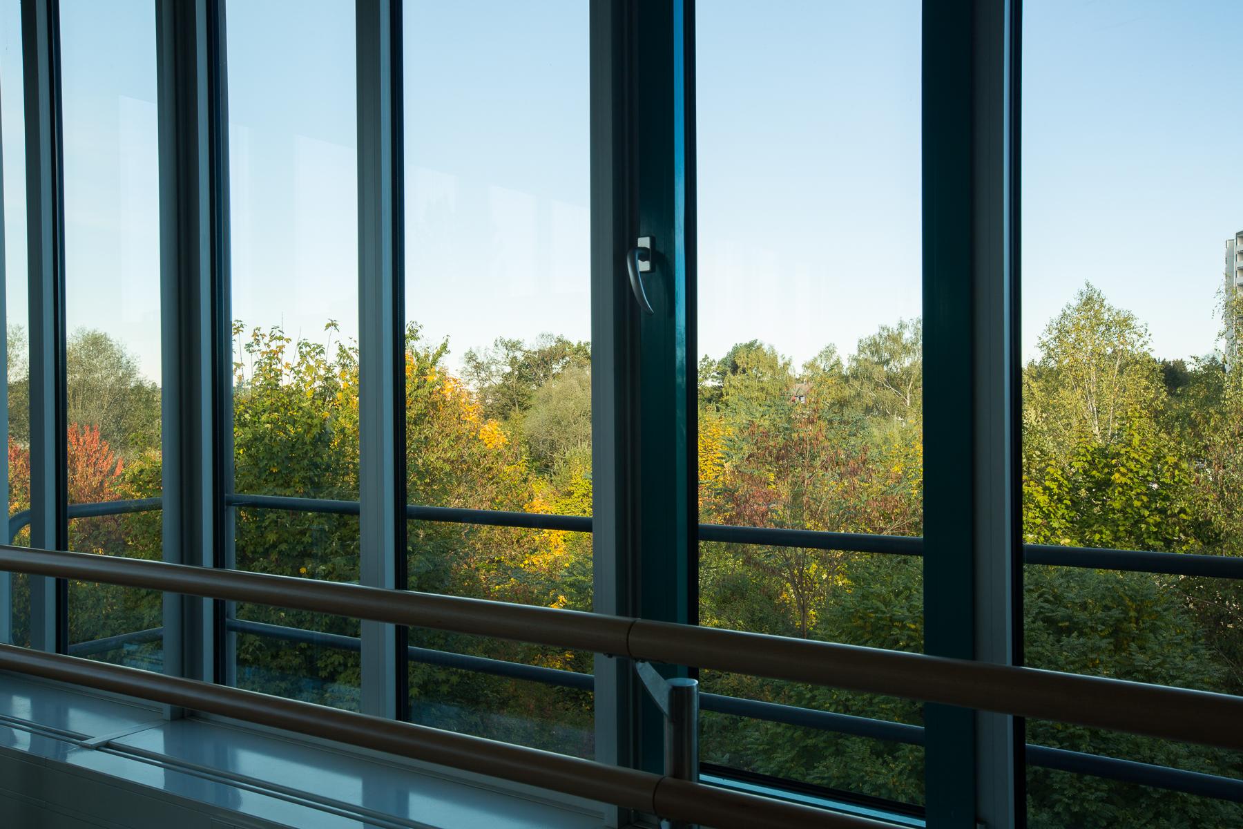 Bild Fenster Tanzstudio